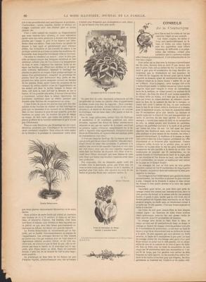 mode-illustree-1899-n7-p80