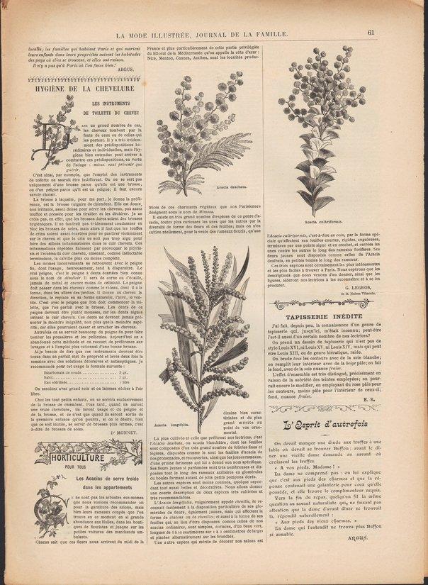 mode-illustree-1900-n5 p61