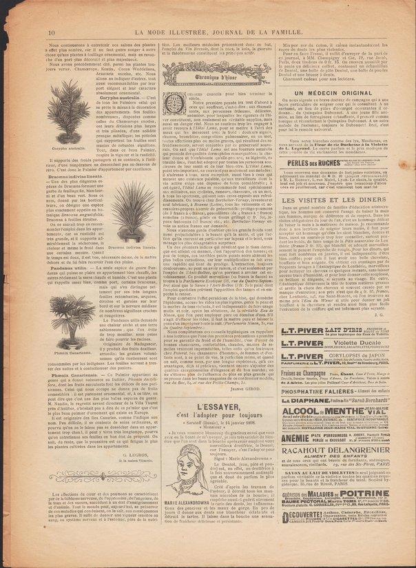 1900 n1 p10